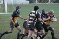 Old Hamptonians vs. 1st XV