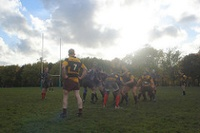 Belsize Park vs. 2nd XV